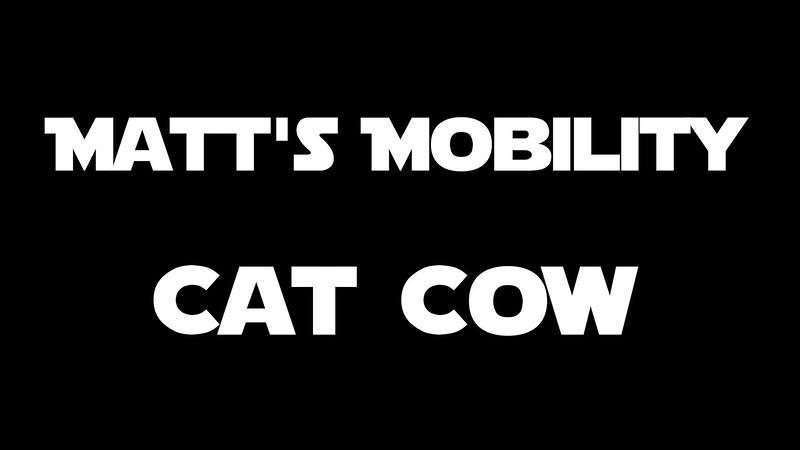 Cat Cow