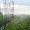 The canopy walkway at Sacha Lodge, by participant Nancy Barnhart