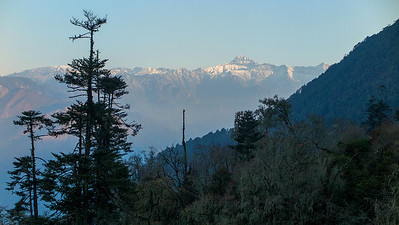 Some of the minor peaks of the Himalayas, as seen from 11,000 feet elevation at Pele La. Photo by guide Richard Webster.