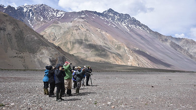 Birding the Yeso Valley high above Santiago. Photo by participant Daphne Gemmill.