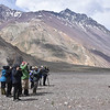 Birding the Yeso Valley high above Santiago by participant Daphne Gemmill