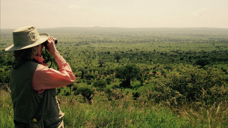 Taking the long view -- across the Serengeti. Photo by participant Alice Whitmore.