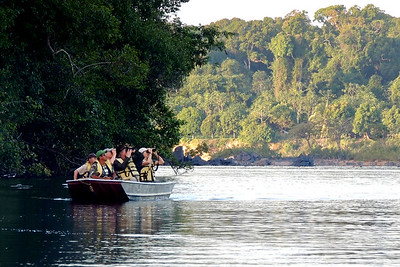 Boating and birding on the Essequibo River, by guide Megan Edwards Crewe