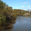 Bayou in southwestern Louisiana by guide Dan Lane