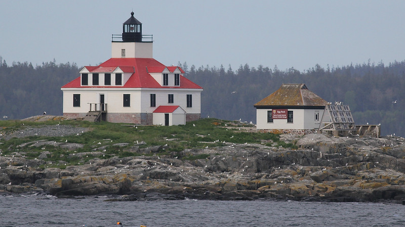 Egg Rock Lighthouse near Bar Harbor, by guide Eric Hynes