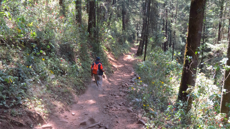 The trail up and down Cerro Pelon, by guide Micah Riegner.