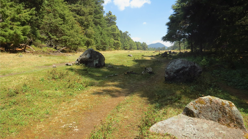 The meadow at the top of Cerro Pelon by guide Micah Riegner
