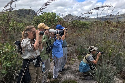 Our group birding in Northeast Brazil by guide Bret Whitney
