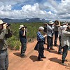 Combing the cerrado  by guide Bret Whitney