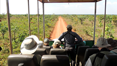 Heading out on a safari truck in Emas NP, by participant Peter Bono