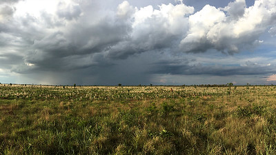 Afternoon thunderstorm clouds over Emas NP, by participant Marshall Dahl