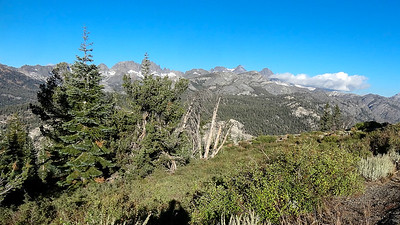 A view along the Mammoth Scenic Loop, by participant David Baker