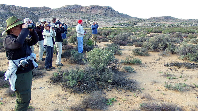 Birding the Goegap Reserve, by participant Sally Marrone