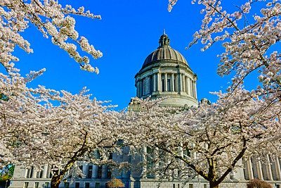 Washington State Capitol Building