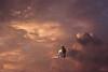 Cloud Contemplation