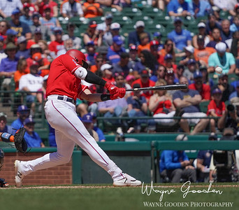 Joey Gallo photo by Wayne Gooden