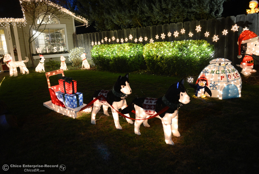 . The Gray Families doggie themed Christmas light display Wednesday December 6, 2017 in Chico, California. (Emily Bertolino -- Enterprise-Record)