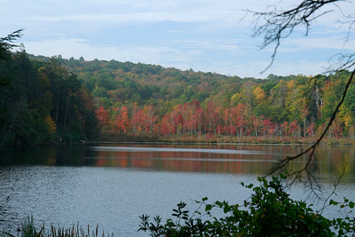Laurel Pond, a beautiful glacial pond in Sussex Co.