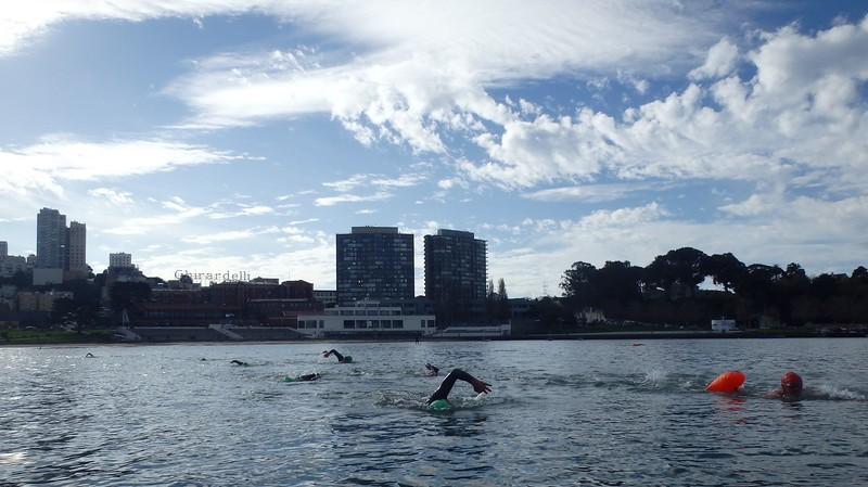 Swim with Pedro - Fall 2014