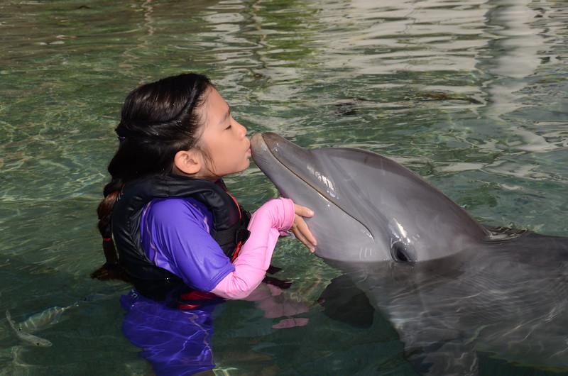 Alice kissing a dolphin at the Waikoloa Hilton on the Big Island of Hawaii