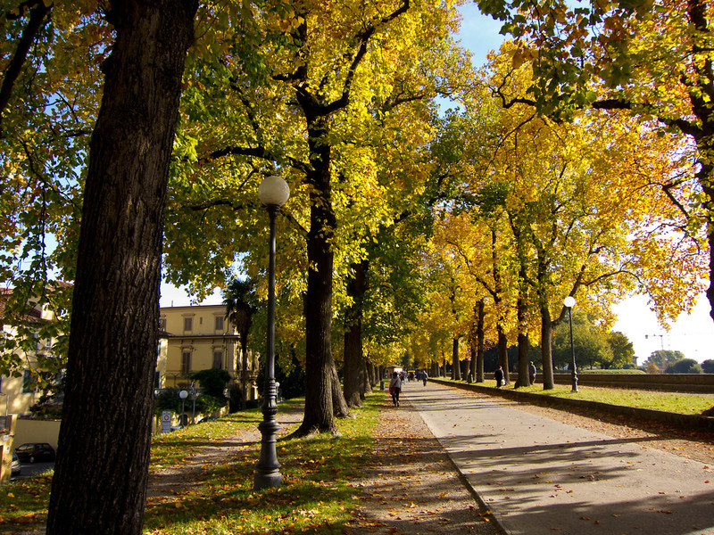 Lucca: Fall colors along the Passeggiata delle Mura, the walk and bike way on top of the city wall.