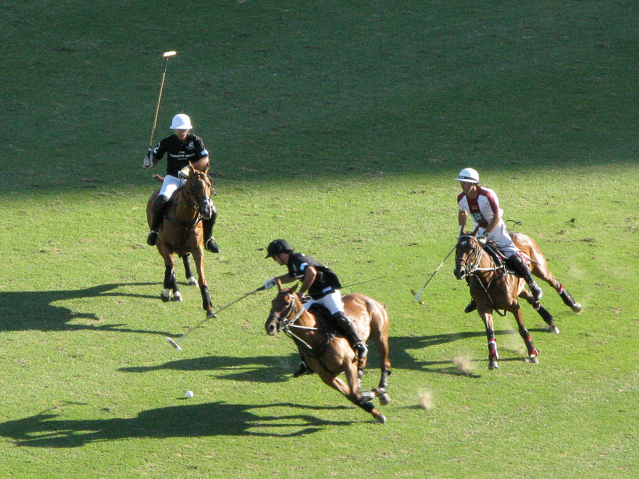 Argentine Polo.  Keep your eye on the ball.