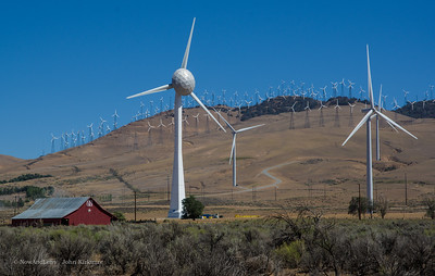 Wind Turbine Farm, Highway 15