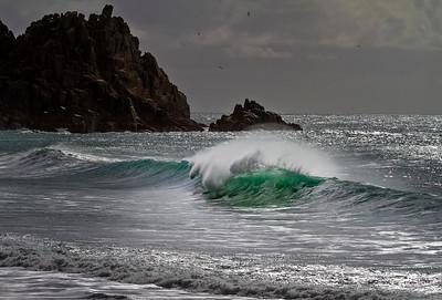Gannet Bay