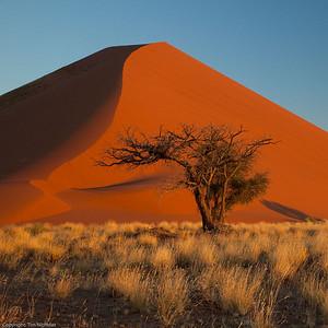 Namibia09-1073
