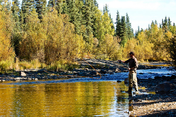 Brian fly-fishing one of the numerous streams we encountered on the way back to Fairbanks.