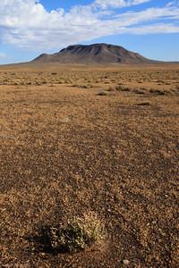 Tankwa Karoo National Park, early morning  view towards Mt Leeuberg