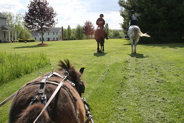 Highpoint Farm 2014