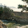Point Lobos State National Reserve