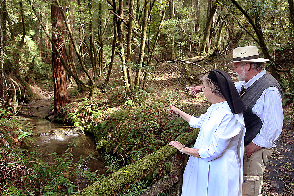 . The headwaters of Bean Creek emanate from a spring on the religious order\'s property where a wildlife tunnel will be built beneath Highway 17\'s Laurel Curve.  (Dan Coyro -- Santa Cruz Sentinel)