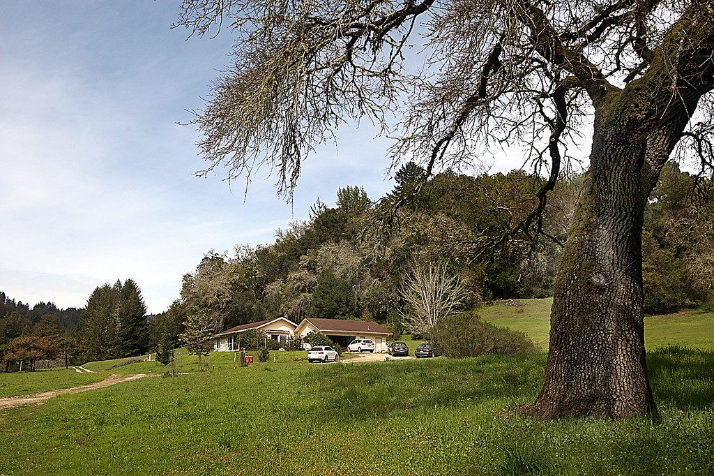 . Marywood is a religious retreat spread over 173 acres of pastoral meadows in amongst stands of oak and redwood where a wildlife tunnel beneath Highway 17 is planned for 2020.  (Dan Coyro -- Santa Cruz Sentinel)