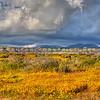 carrizo plain hills 2086-