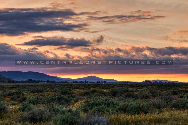 carrizo plain sunset 2357-