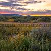 carrizo plain sunset-2389
