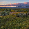 carrizo plain sunset-2367