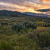 carrizo plain sunset-2361