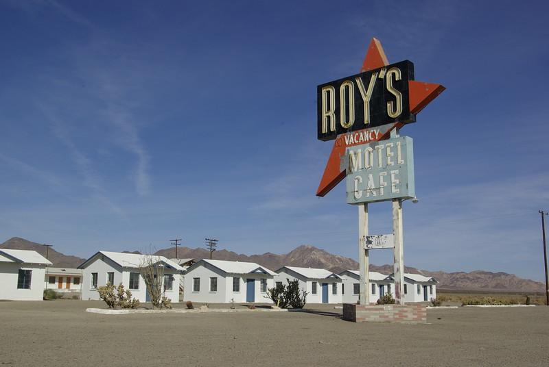 Roy's Daytime, Amboy