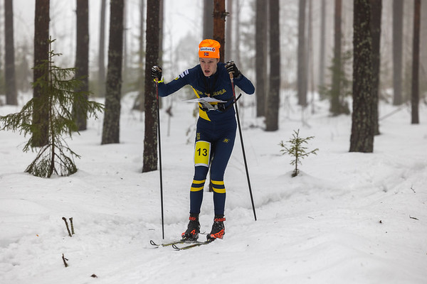 Niklas Ekström, näyttökisojen 2.