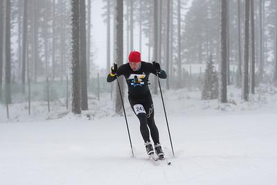 Tero Linnainmaa, SM-hopeaa