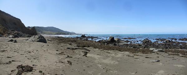 Westport Beach - Mendocino Coast 005