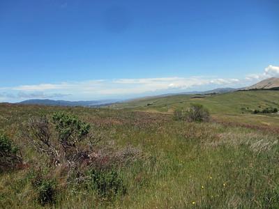 Bolinas Ridge 001