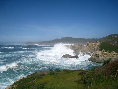 Point Lobos 02-13-2010 11