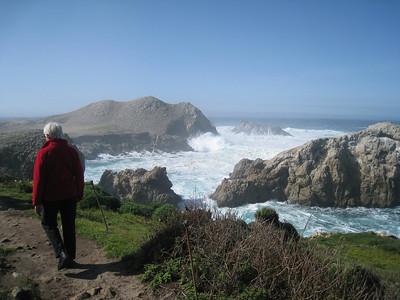 Point Lobos 02-13-2010 07