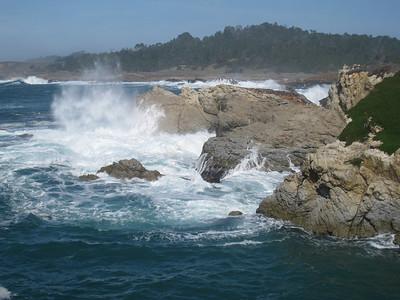 Point Lobos 02-13-2010 06