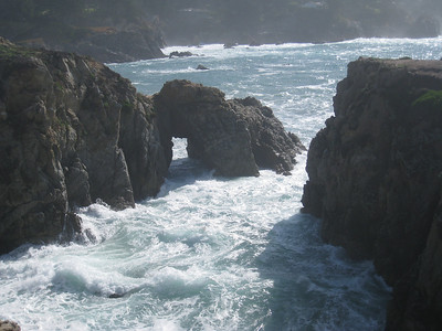Point Lobos 02-13-2010 14