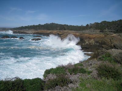 Point Lobos 02-13-2010 17